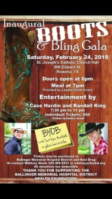 Boots and Bling Gala